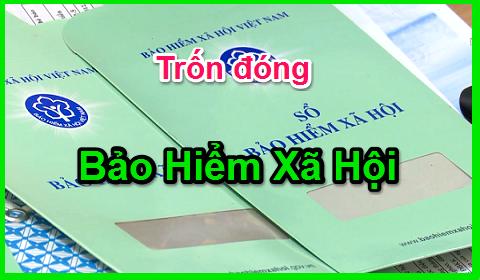 cong-ty-bao-ve-tron-dong-bao-hiem-xa-hoi